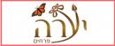 פרחי יערה בחיפה