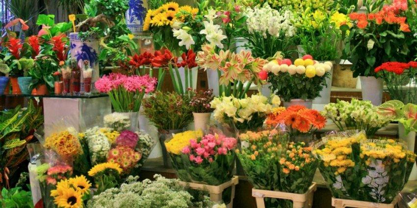חנויות פרחים