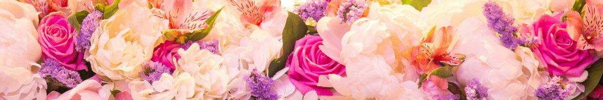 Flowers לבן פורח