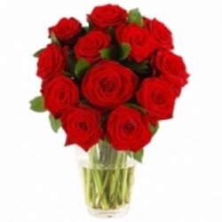 12 Luxury Red Roses