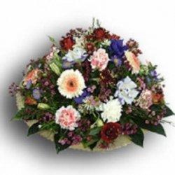 Flowers הצבעוני
