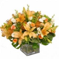 Flowers כתום לוהט