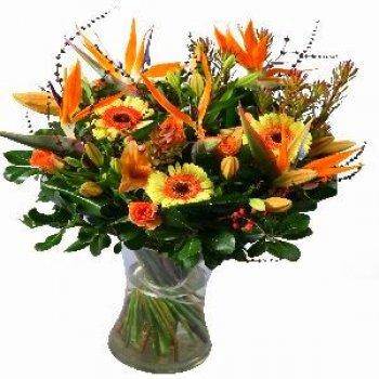 Flowers ציפורי גן עדן
