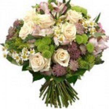 ורדים ואלסטומריה