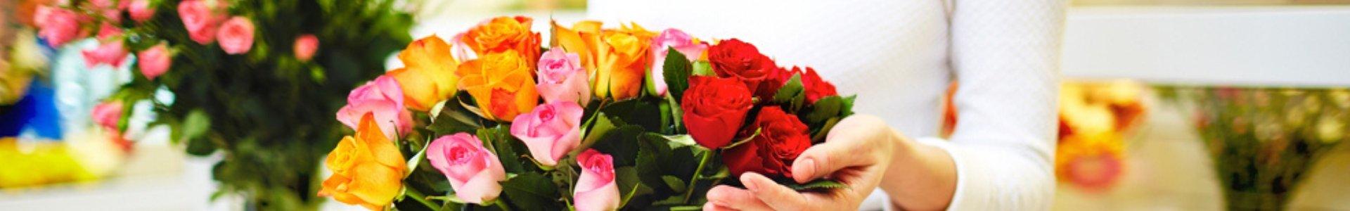 פרחי סוניה - שדרות