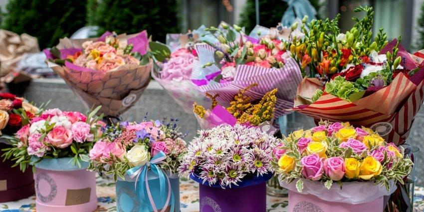 משלוחי פרחים לחנוכה