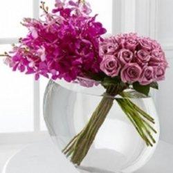 Flowers אלומות ורודות