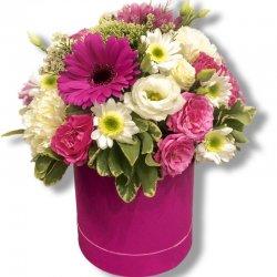קופסת פרחים אביבית